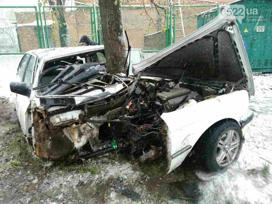 "В Кропивницком произошло ДТП: дерево уничтожило ""BMW""  ФОТО, фото-3"