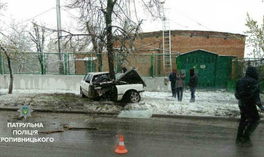 "В Кропивницком произошло ДТП: дерево уничтожило ""BMW""  ФОТО, фото-2"