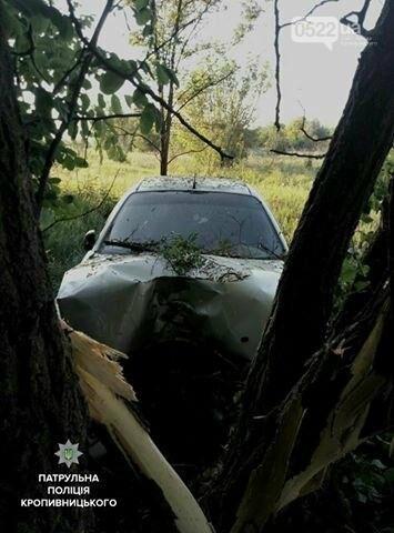 В Кропивницком автомобиль врезался в дерево (ФОТО), фото-1