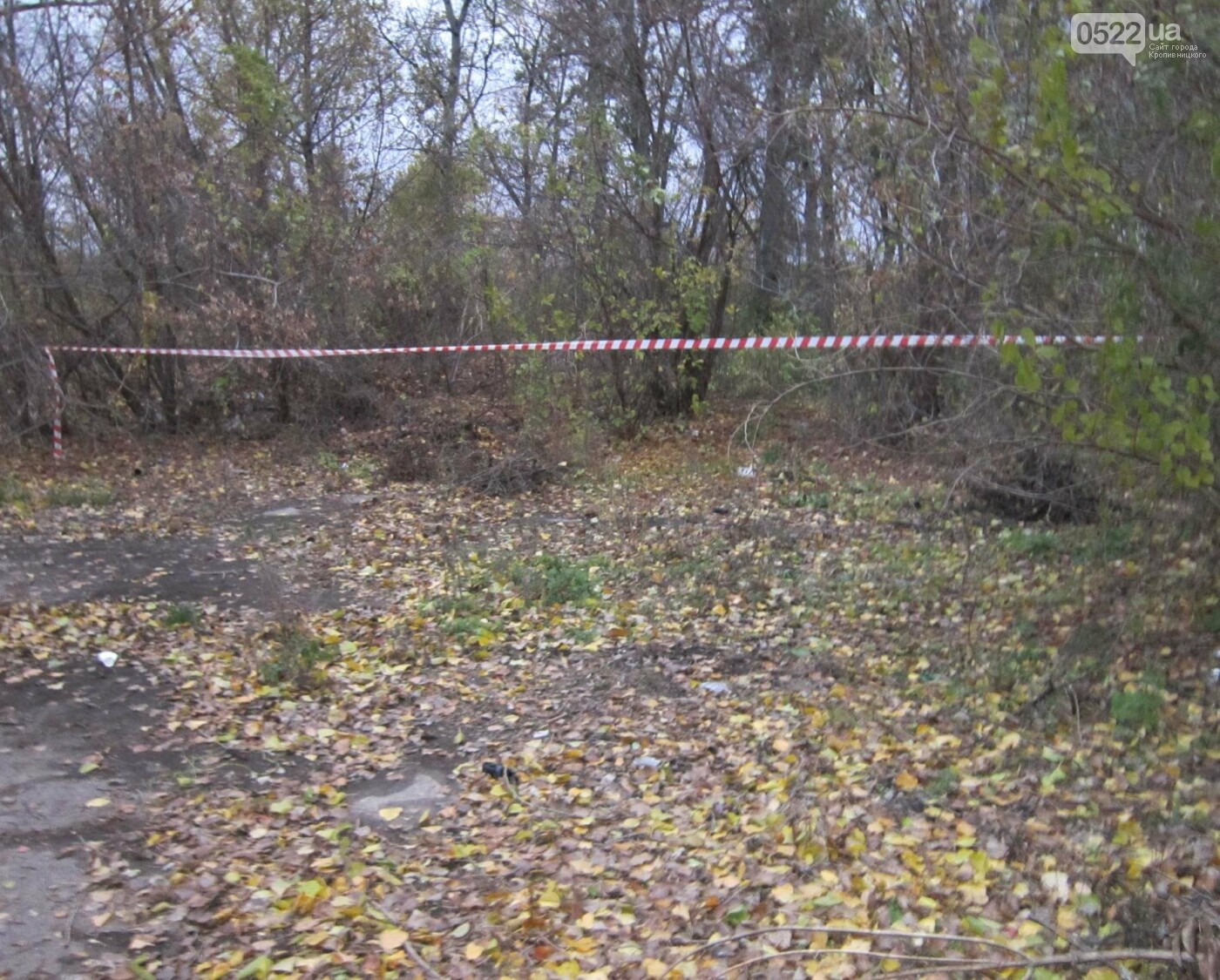 В Кропивницком изнасиловали девушку. ФОТО, фото-1