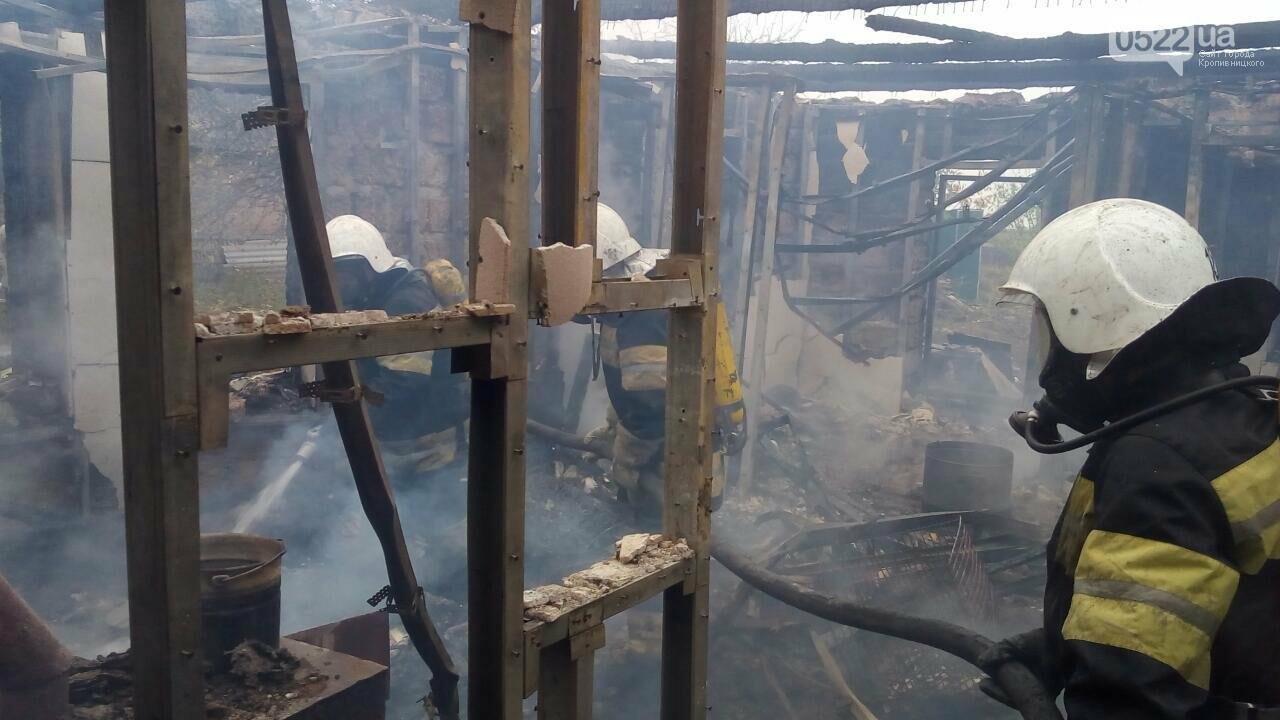 На Кировоградщине в огне сгорели мужчина и женщина. ФОТО, фото-1