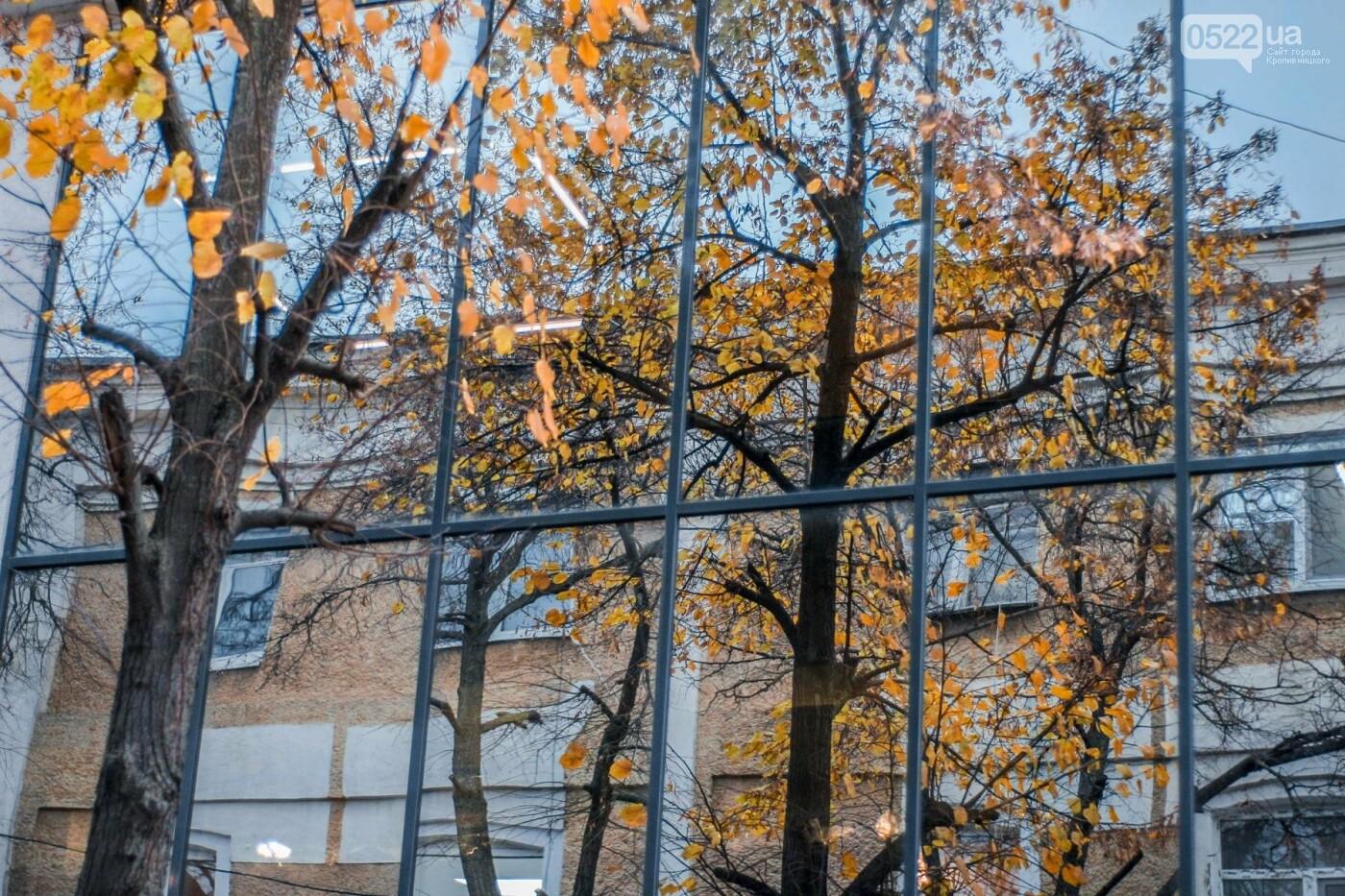 Листопад у Кропивницькому (Фото), фото-15