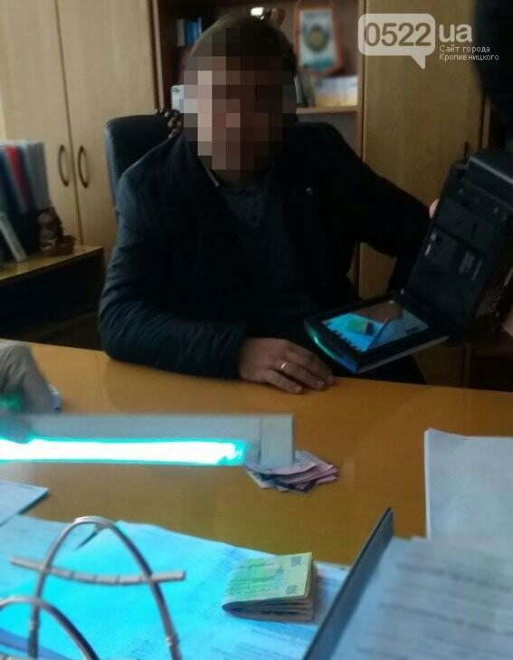 """На Кіровоградщині поліція викрила голову РДА за """"продаж"""" дозволів на чистку придорожніх насаджень. ФОТО, фото-1"""