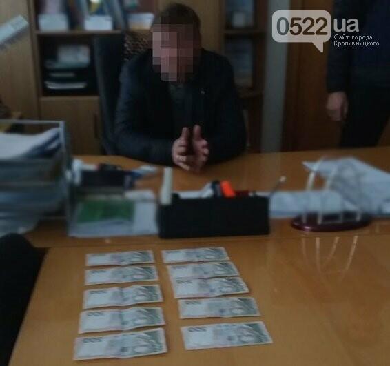 """На Кіровоградщині поліція викрила голову РДА за """"продаж"""" дозволів на чистку придорожніх насаджень. ФОТО, фото-2"""