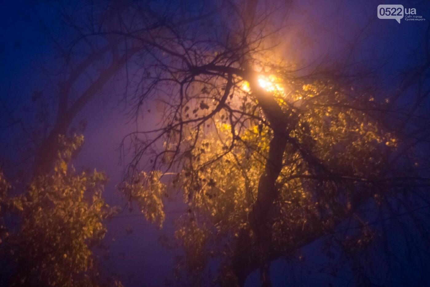 Зранку Кропивницький оповив густий туман. Фото, фото-13