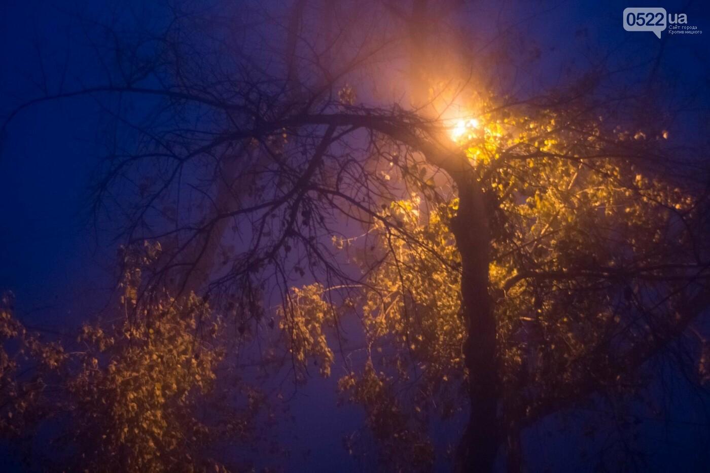 Зранку Кропивницький оповив густий туман. Фото, фото-11