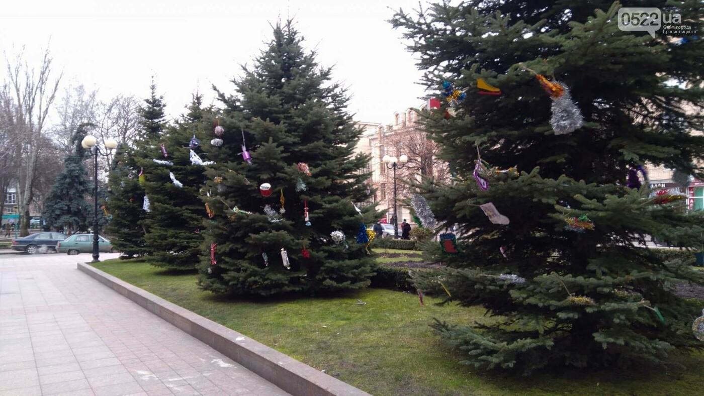 Перед міською радою прикрасили ялинки та встановили вертеп. ФОТО, фото-7