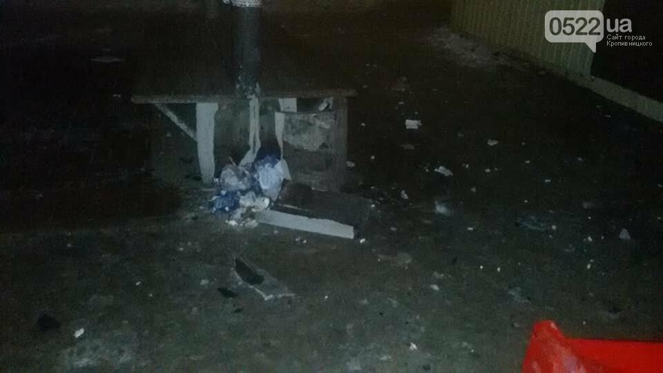 Ночное ДТП в Кропивницком: автомобиль вылетел на остановку и сбил iBox. ФОТО, фото-1