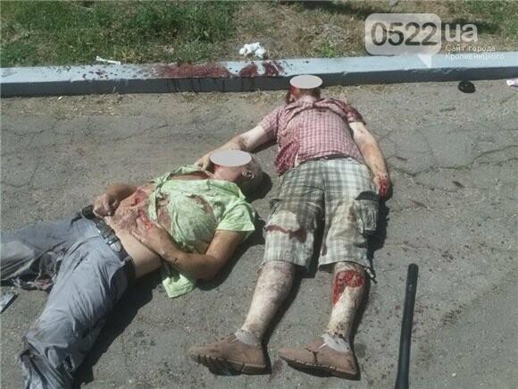 Фото с места ДТП: в Кировоградской области погибли люди, фото-4