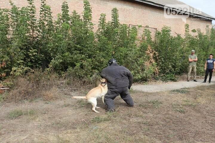 Як у Кропивницькому школярі проходили курс військово-спортивної та тактичної підготовки (ФОТО), фото-6