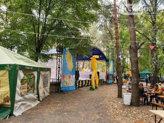 Кропивницький: за традицією, на Козачому острові проходить Фестиваль вуличної їжі (ФОТО) , фото-1