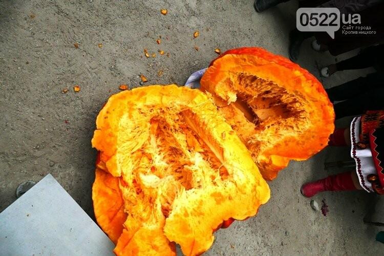 У Кропивницькому визначили нового гарбуза - рекордсмена (ФОТО), фото-1