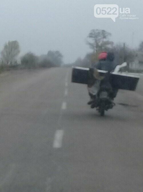 Кіровоградщина: поліція розшукує невідомих, які викрали лампу зовнішнього освітлення, фото-3