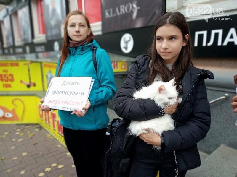 У Кропивницькому активісти закликали людей відмовитися від хутра (ФОТОРЕПОРТАЖ), фото-4