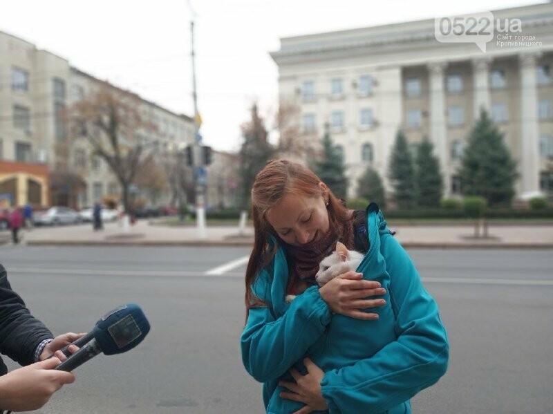 У Кропивницькому активісти закликали людей відмовитися від хутра (ФОТОРЕПОРТАЖ), фото-5