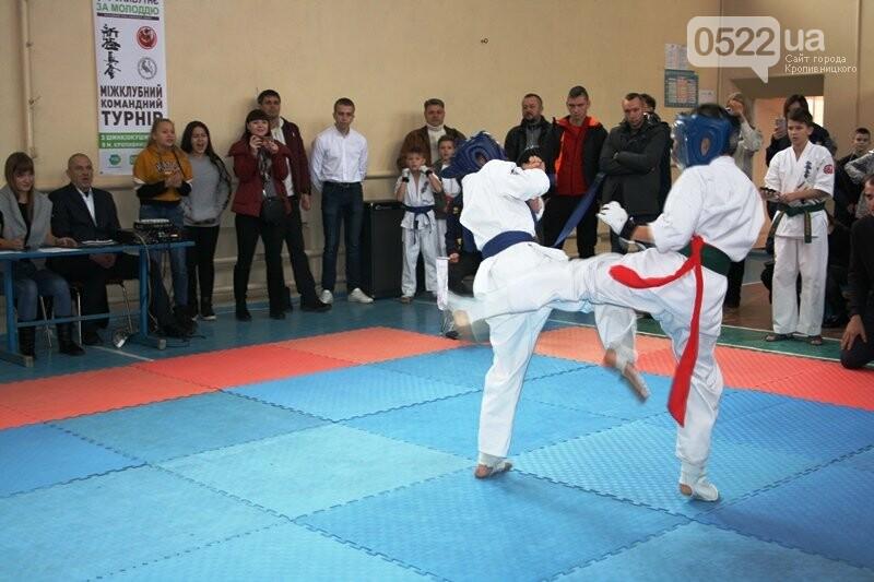 У Кропивницькому відбувся турнір з шинкіокушинкай карате (WKO), фото-3