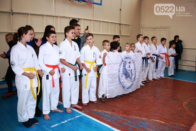 У Кропивницькому відбувся турнір з шинкіокушинкай карате (WKO), фото-10