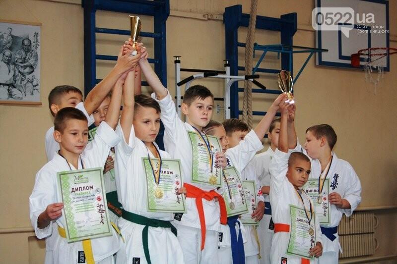 У Кропивницькому відбувся турнір з шинкіокушинкай карате (WKO), фото-14