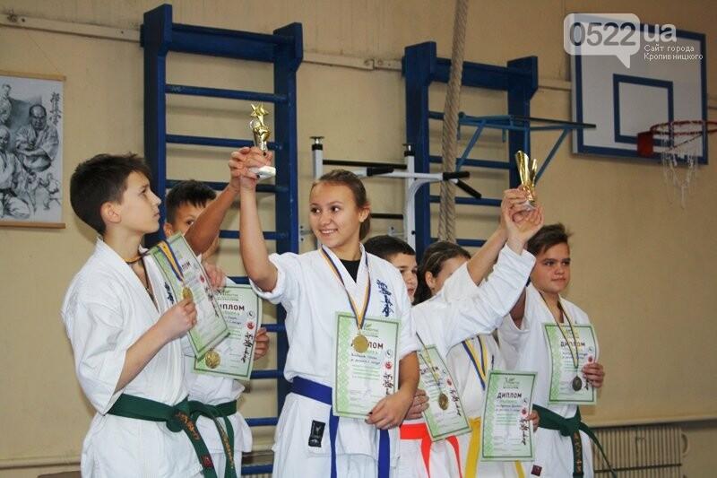 У Кропивницькому відбувся турнір з шинкіокушинкай карате (WKO), фото-17