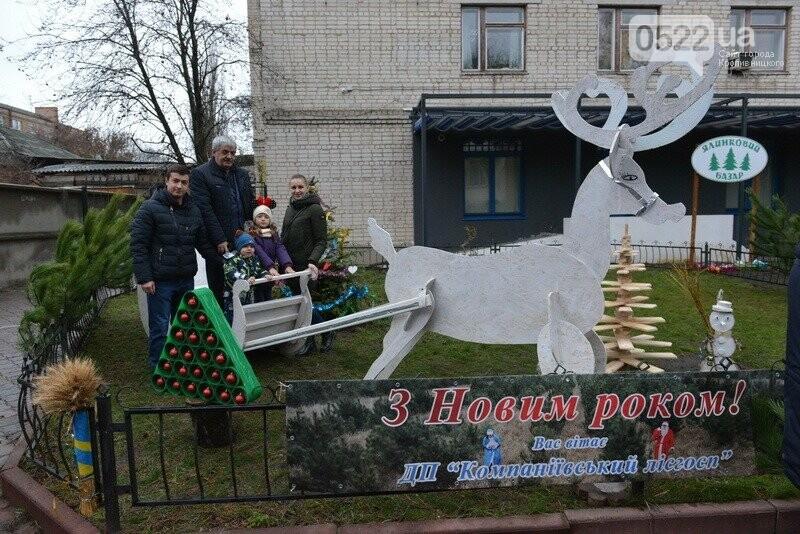 Лісівники Компаніївщини привітали жителів області з новорічними святами, фото-8