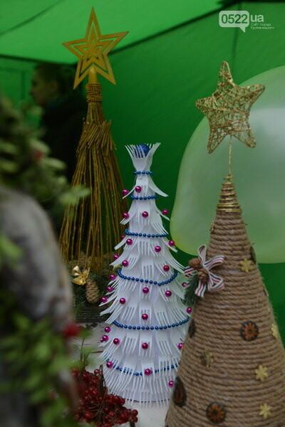 Лісівники Компаніївщини привітали жителів області з новорічними святами, фото-4