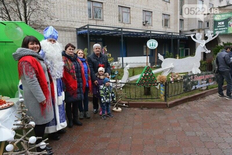 Лісівники Компаніївщини привітали жителів області з новорічними святами, фото-10