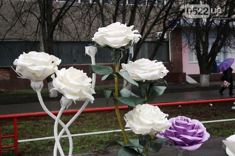 У Кропивницькому відкрився передсвятковий ярмарок, фото-6