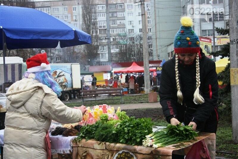 У Кропивницькому відкрився передсвятковий ярмарок, фото-10