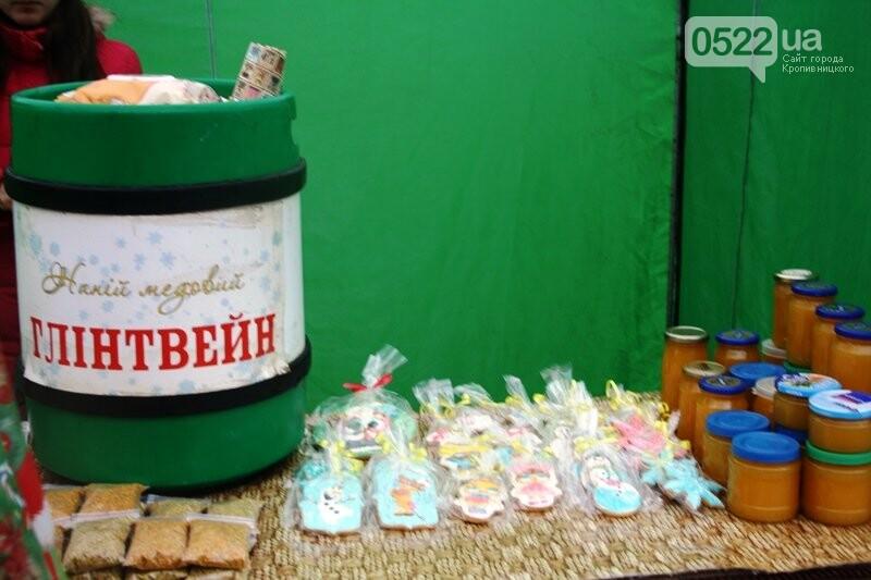 У Кропивницькому відкрився передсвятковий ярмарок, фото-17