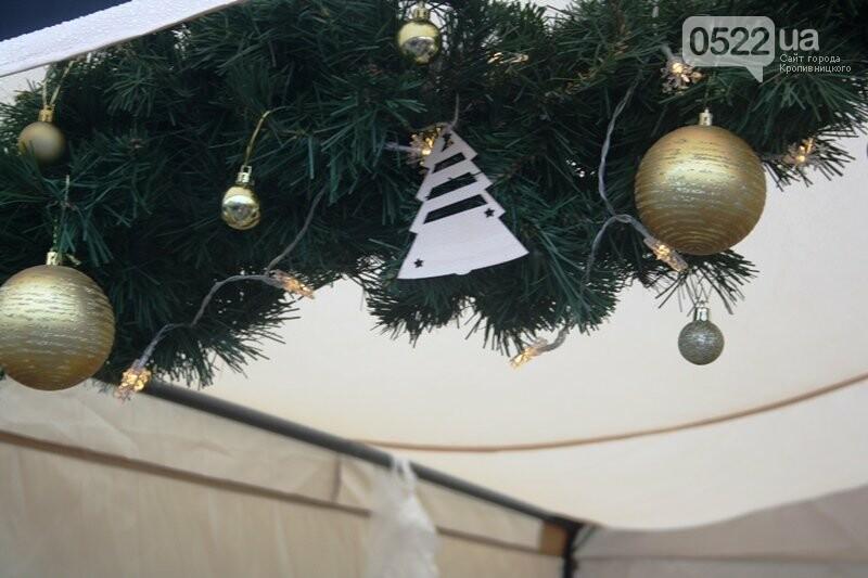 У Кропивницькому відкрився передсвятковий ярмарок, фото-13
