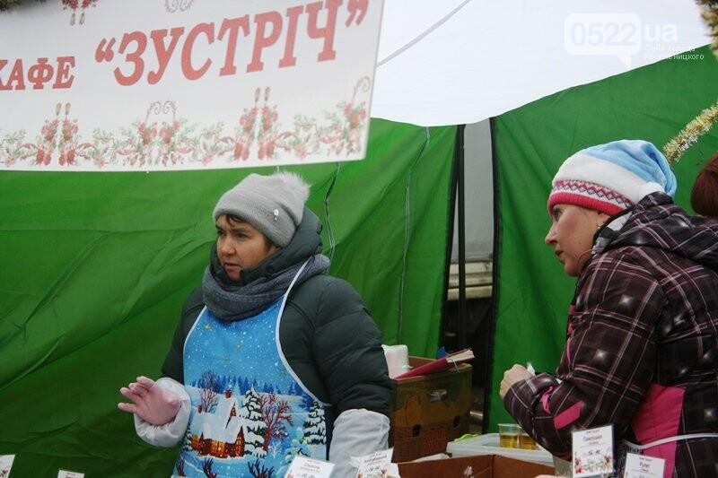 У Кропивницькому відкрився передсвятковий ярмарок, фото-15