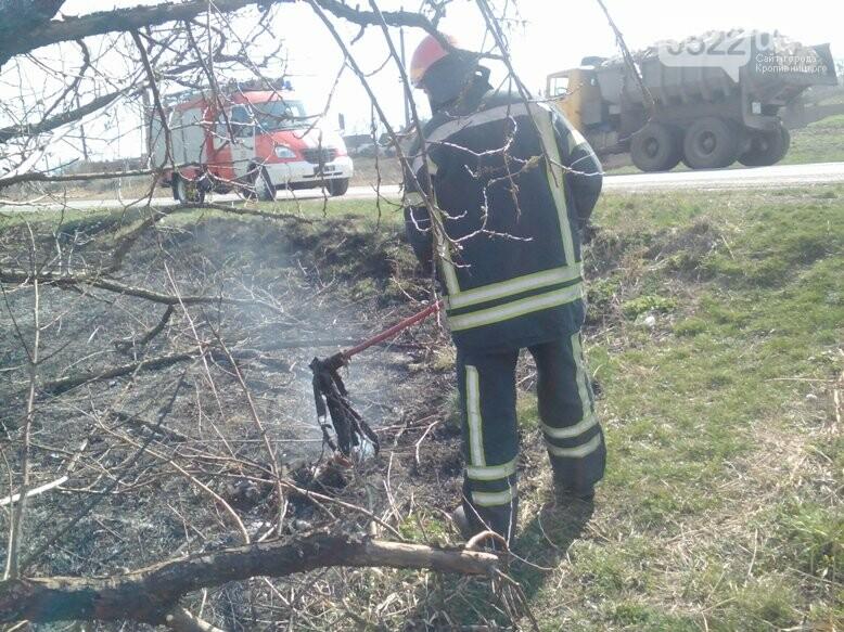 Кіровоградщина: Припиніть випалювати минулорічну рослинність, фото-1