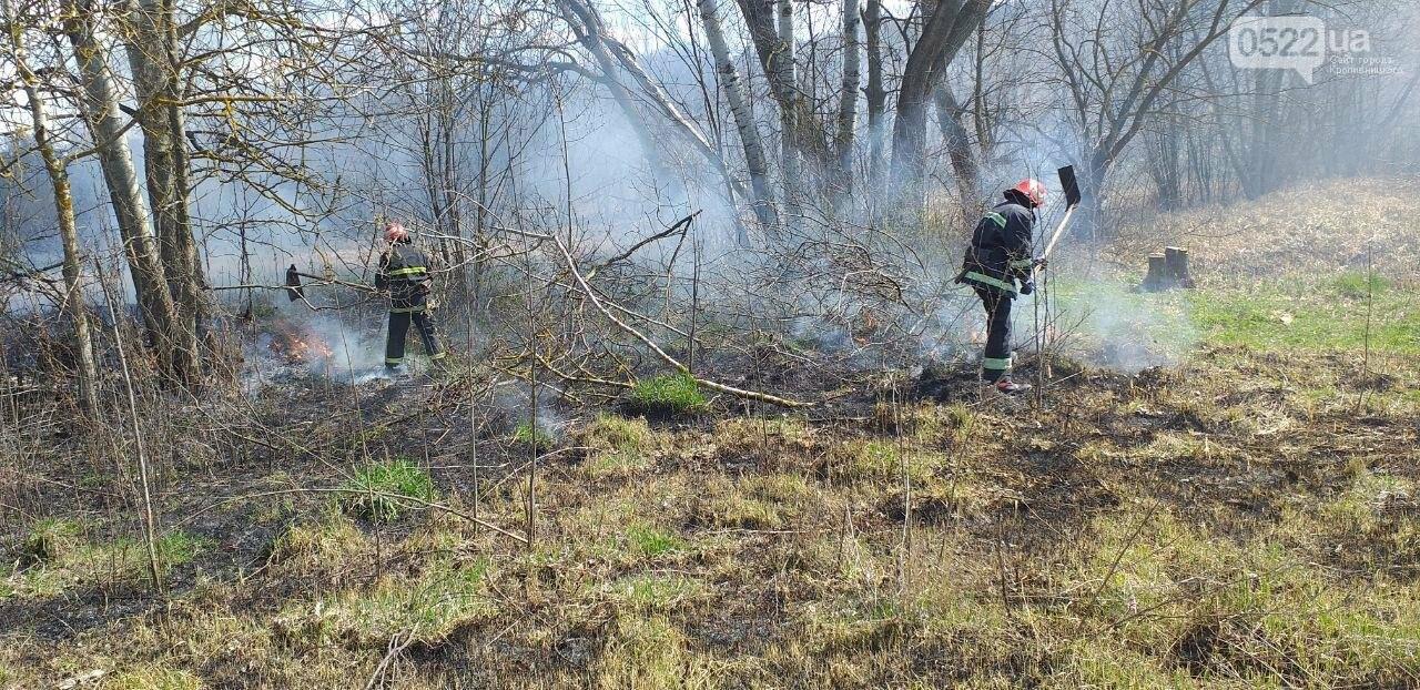 Кіровоградщина: Припиніть випалювати минулорічну рослинність, фото-2