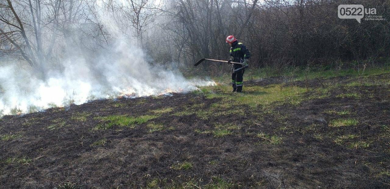 Кіровоградщина: Припиніть випалювати минулорічну рослинність, фото-3
