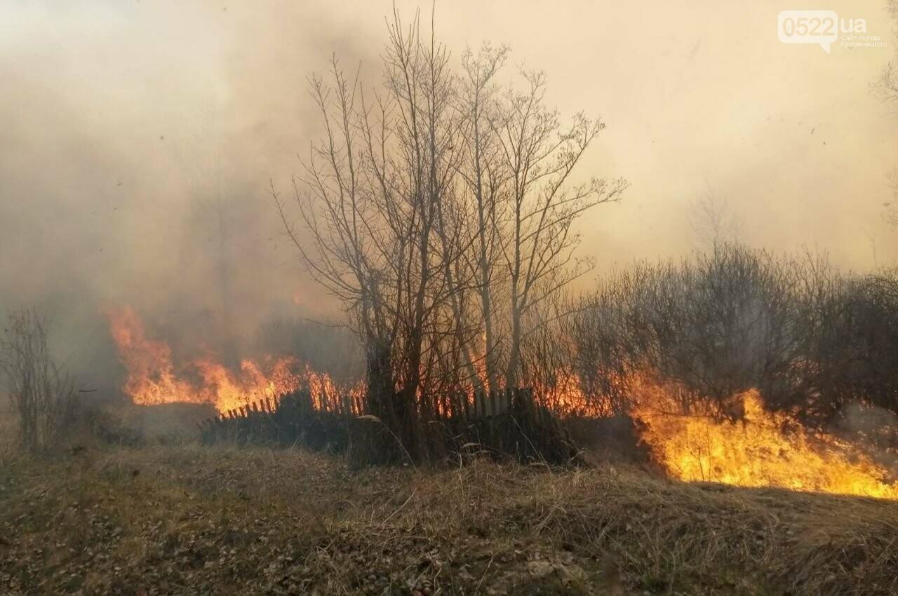 Зведений підрозділ кіровоградського гарнізону допомагає долати лісові пожежі на Київщині, фото-11
