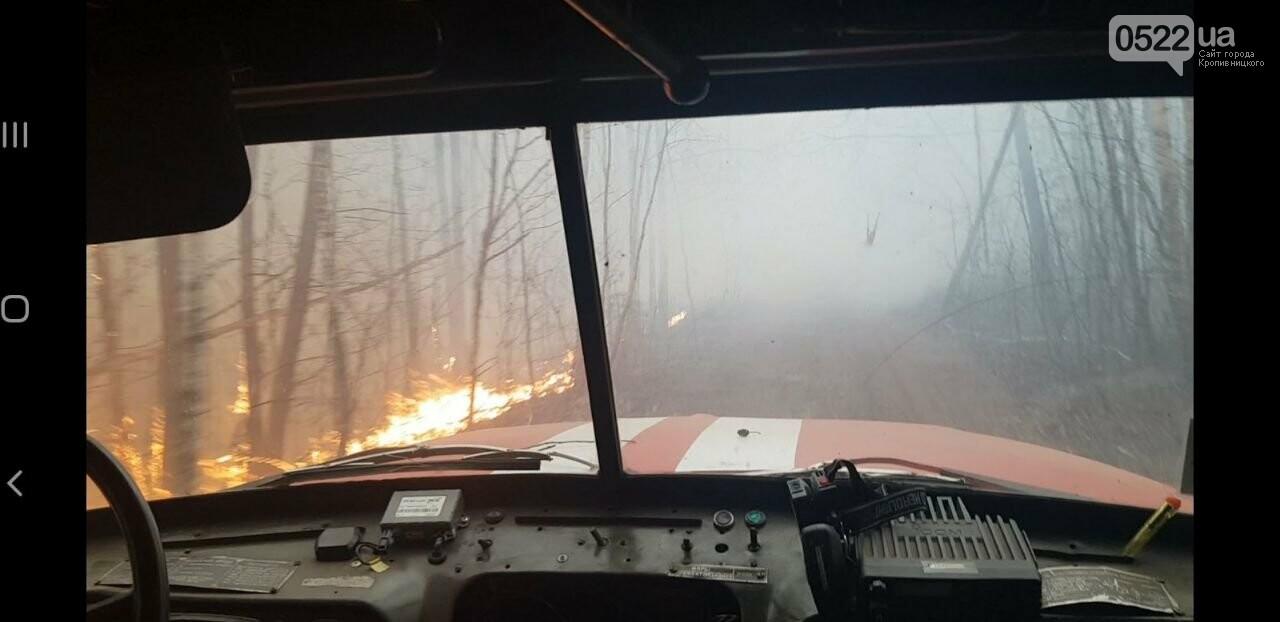 Зведений підрозділ кіровоградського гарнізону допомагає долати лісові пожежі на Київщині, фото-13