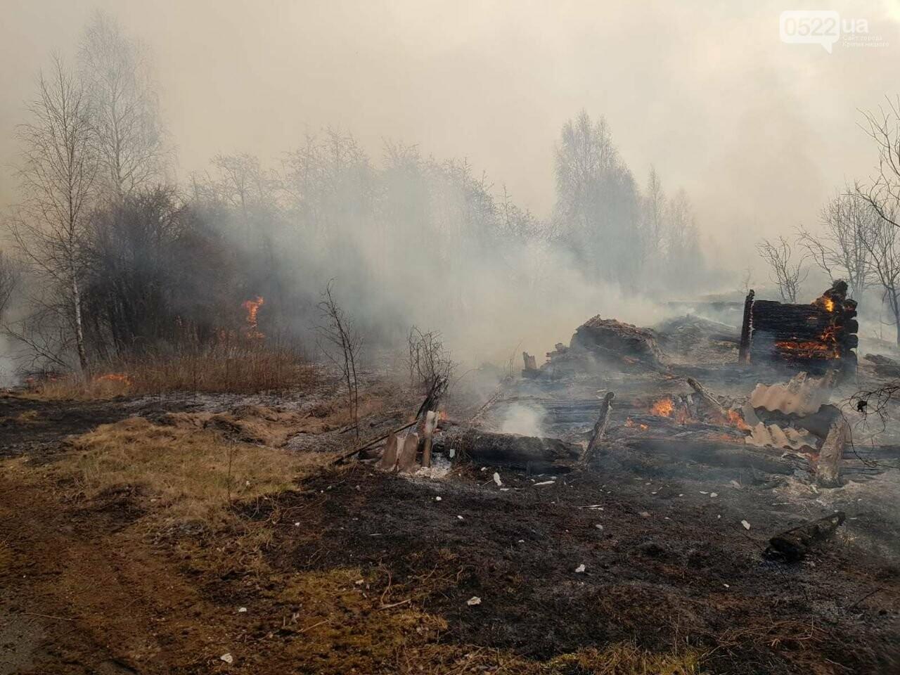 Зведений підрозділ кіровоградського гарнізону допомагає долати лісові пожежі на Київщині, фото-14