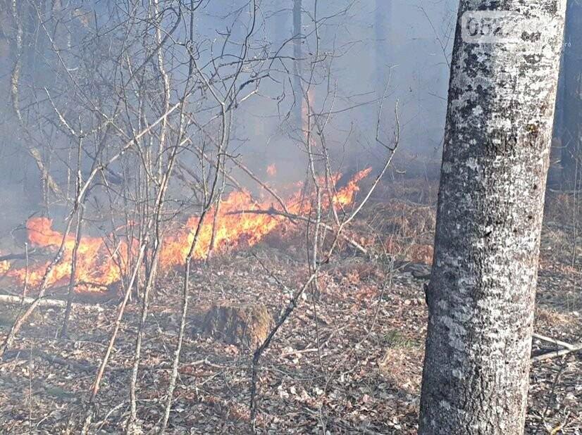 Зведений підрозділ кіровоградського гарнізону допомагає долати лісові пожежі на Київщині, фото-15