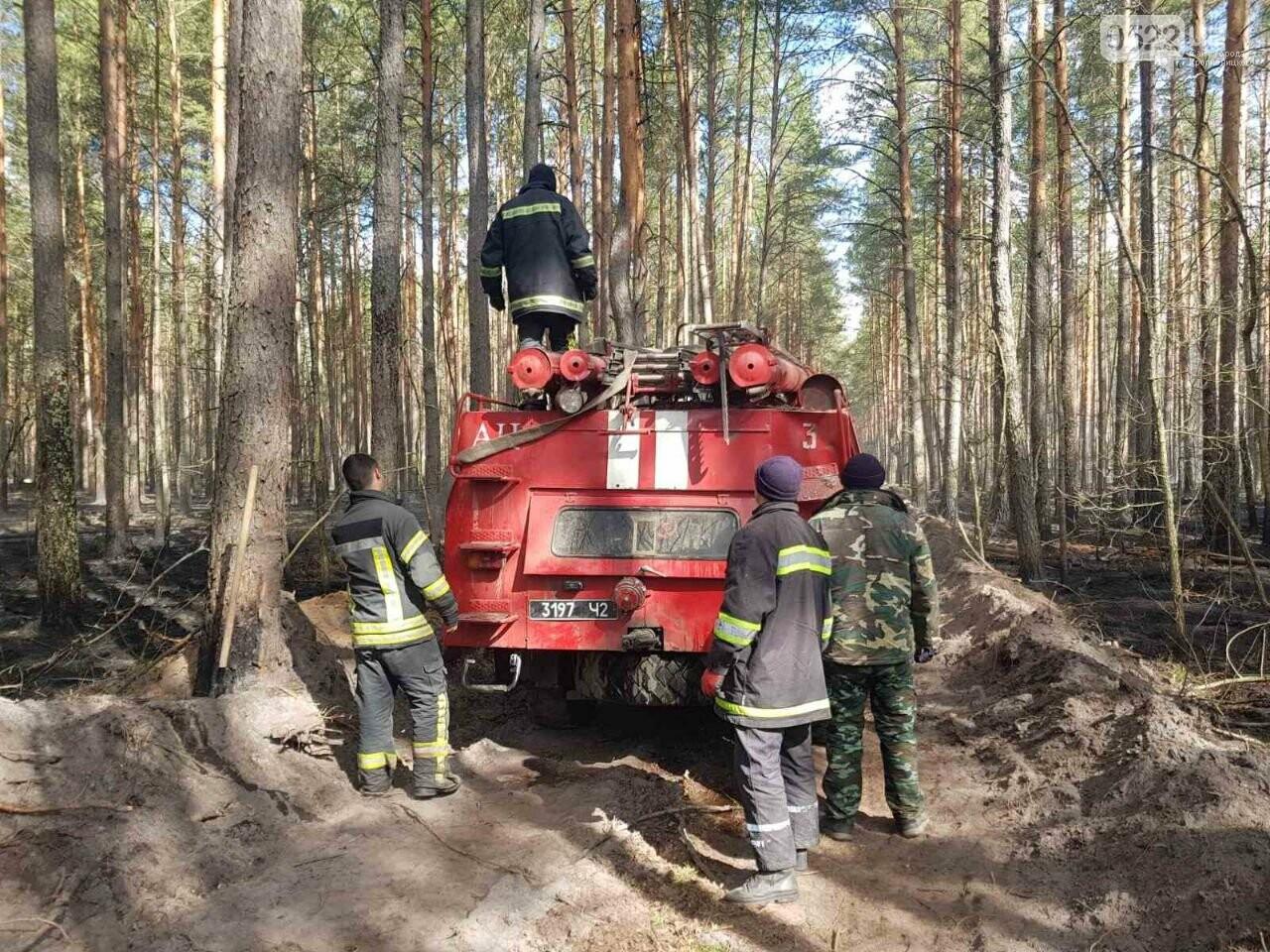 Зведений підрозділ кіровоградського гарнізону допомагає долати лісові пожежі на Київщині, фото-2