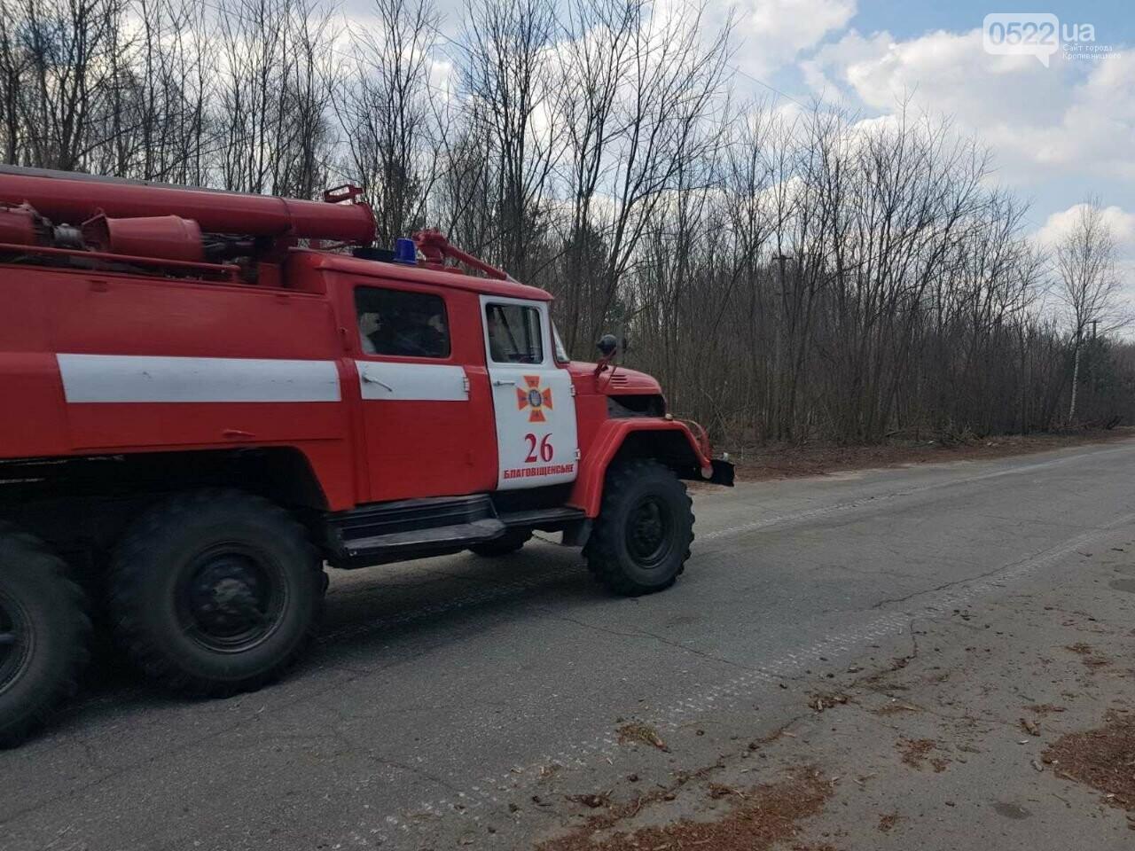 Зведений підрозділ кіровоградського гарнізону допомагає долати лісові пожежі на Київщині, фото-3