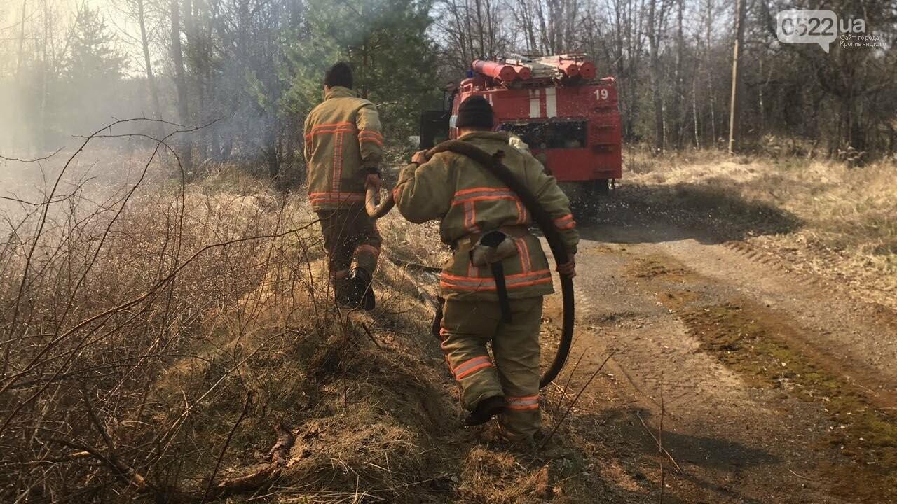Зведений підрозділ кіровоградського гарнізону допомагає долати лісові пожежі на Київщині, фото-6