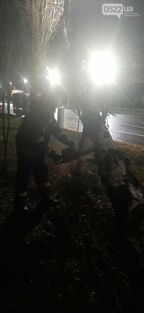 Сильний вітер зніс ряд дерев, які створили полосу перешкод на дорозі, фото-1