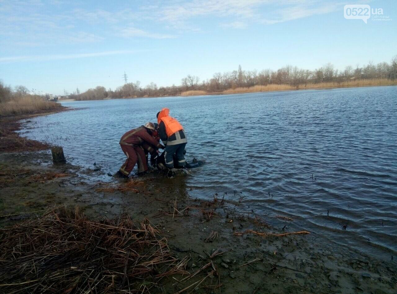 """Тіло витягли з води: що відомо про """"водяну"""" трагедію, фото-1"""