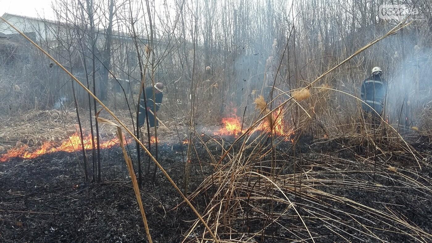 Рятувальників 10 разів викликали ліквідувати пожежу сухої трави у полях області, фото-4