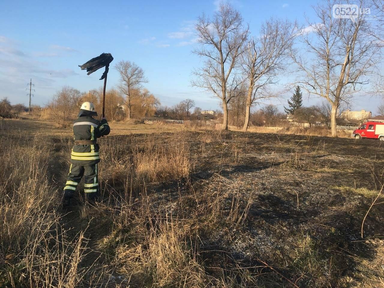 Рятувальників 10 разів викликали ліквідувати пожежу сухої трави у полях області, фото-3