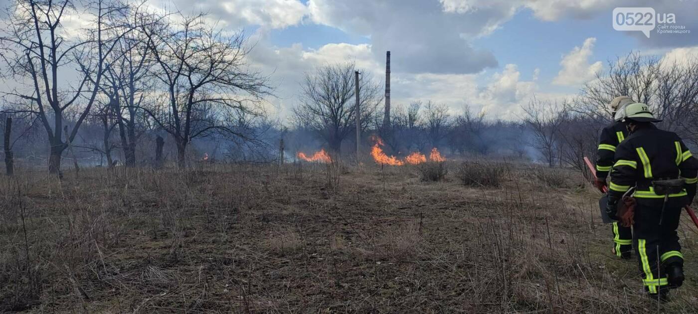 Рятувальників 10 разів викликали ліквідувати пожежу сухої трави у полях області, фото-2