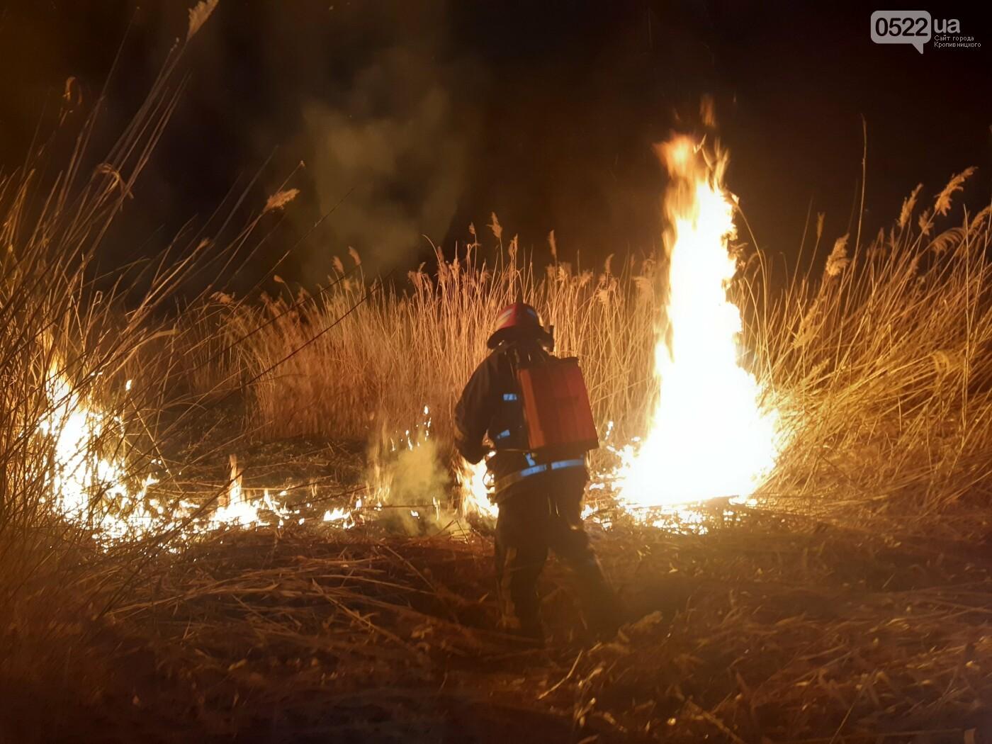 Рятувальників 10 разів викликали ліквідувати пожежу сухої трави у полях області, фото-1