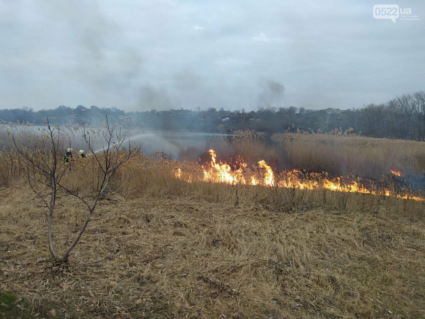 Вогонь продовжує вражати відкриті території: 2,5 га полей знищено за добу, фото-1