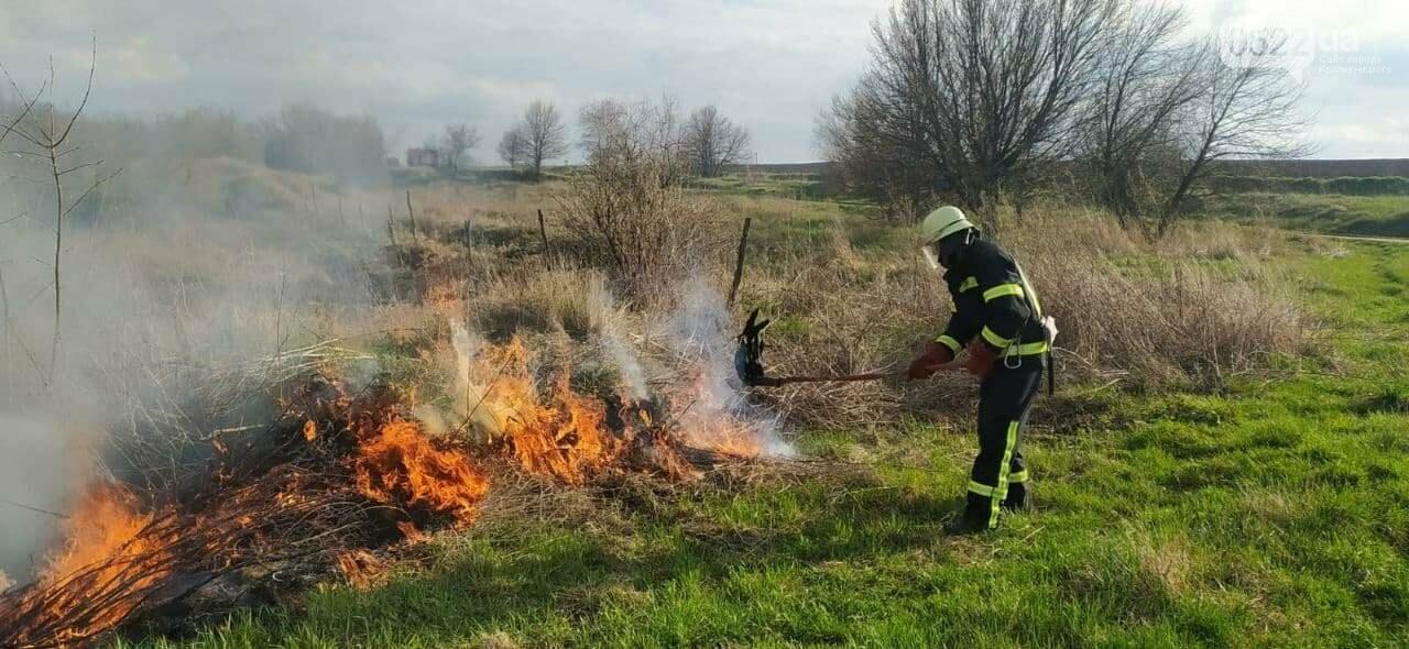 На відкритій території рятувальники ліквідовували пожежі 5 разів, фото-2