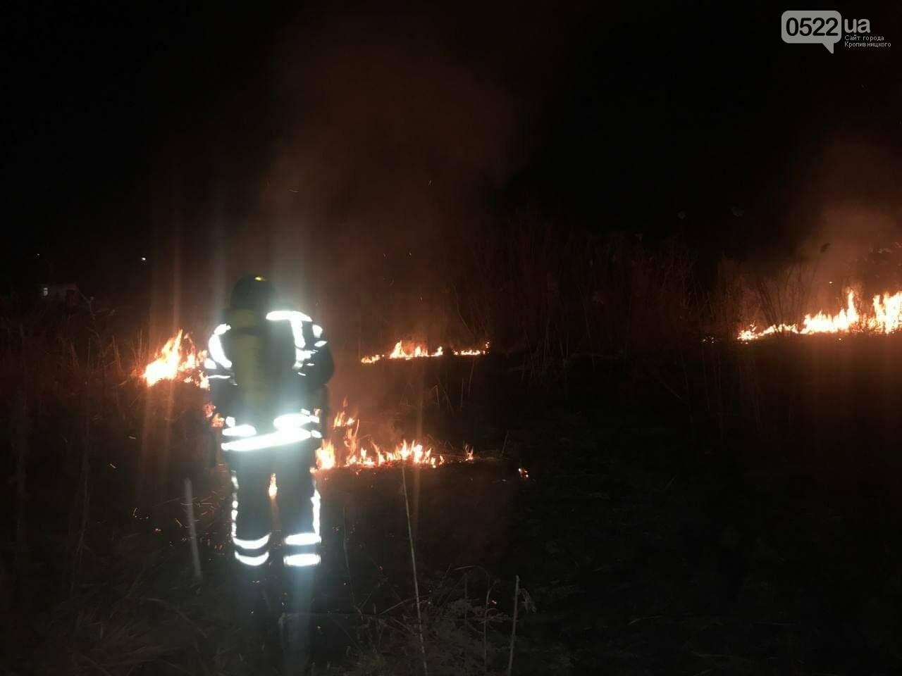На відкритій території рятувальники ліквідовували пожежі 5 разів, фото-1
